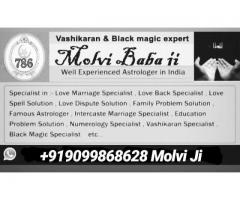 Intercast molviji l o v e marriage *problem solution:91-9099868628