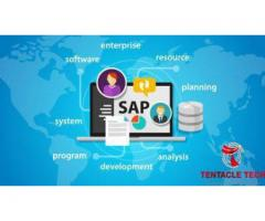 SAP software service company