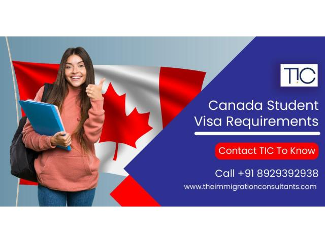 Canada Immigration Consultant in Pune | Study Visa Service | Theimmigrationconsultants.com - 1/1